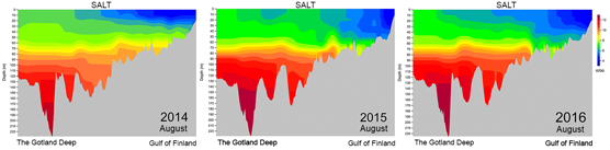 Salinity from the Gotland basin to the Gulf of Finland in August 2014, 2015 and 2016.